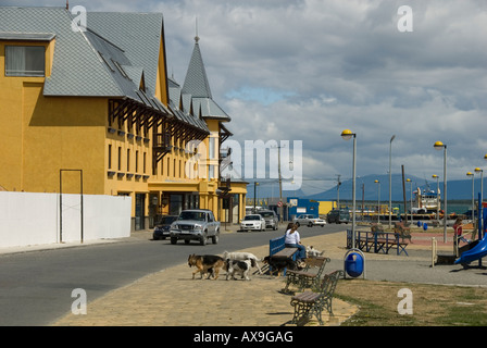 Puerto Natales,Chile Patagonian Stepp,Chile - Stock Photo