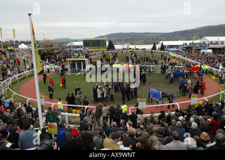 The winners enclosure on Gold Cup day at Prestbury Racecourse during the Cheltenham National Hunt Festival - Stock Photo