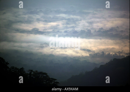 Misty rainforest at dawn, seen from Cerro Pirre, in Darien national park, Republic of Panama. - Stock Photo
