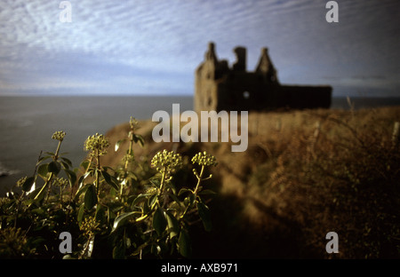 Dunskey Castle near Portpatrick - Stock Photo