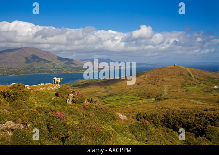 The Wild Atlantic Way, Mountain Ridge on Bear Island, Beara Peninsula, County Cork, Ireland - Stock Photo
