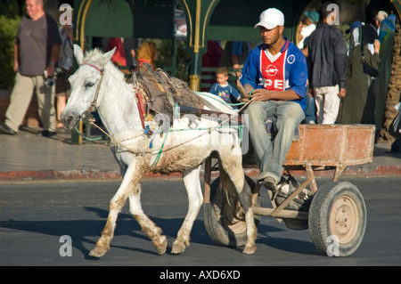 Horizontal streetscene of a donkey and cart trotting through the streets of Marrakesh in the sunshine. - Stock Photo