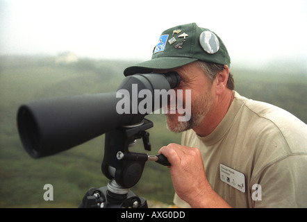 Man watching rare Choughs on the coast of the Lizzard Cornwall England - Stock Photo
