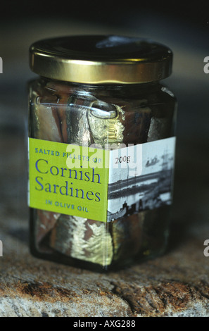 Jar of salted pilcards in a jar of olive oil at The Pilcard Works Museum Newlyn Penzance Cornwall - Stock Photo