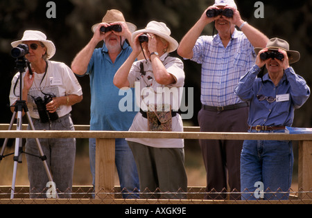 Bird watchers, Australia - Stock Photo