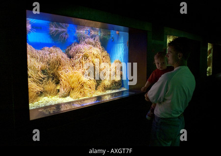 father and daughter standing in front of an aquarium - Stock Photo