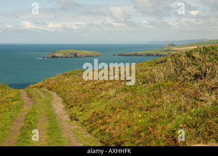 View of Cardigan Island from the Pembrokeshire Coast Path - Stock Photo