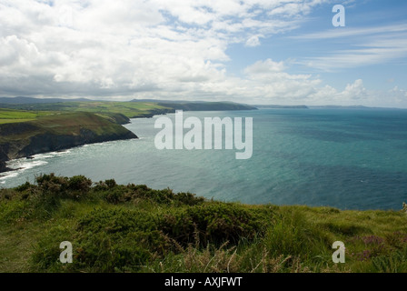 View from Cemaes Head overlooking the Pembrokeshire Coast Path, the West Wales coast line and Cardigan Bay - Stock Photo