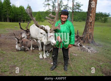 A Tsaatan woman with reindeers Lake Khovsgol Nuur Mongolia - Stock Photo