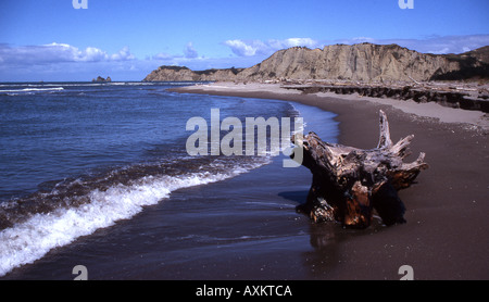 Tolaga Bay in the North Island of New Zealand - Stock Photo