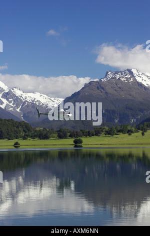 Diamond Lake Paradise Near Glenorchy South Island New Zealand Aerial Stock Ph