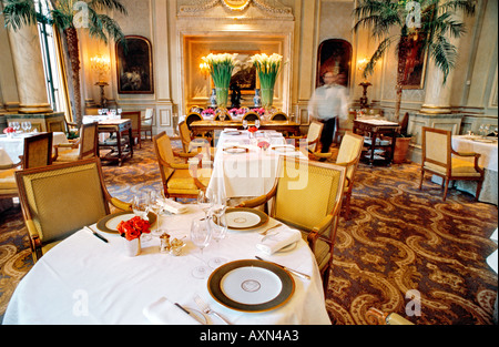 France Paris, Inside Fancy Dining, French Restaurant 'Le V' 'Le Cinq' Haute Cuisine, Luxury Hotel Four Seasons George - Stock Photo