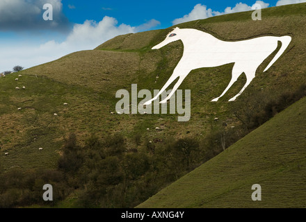 Westbury White Horse - Stock Photo
