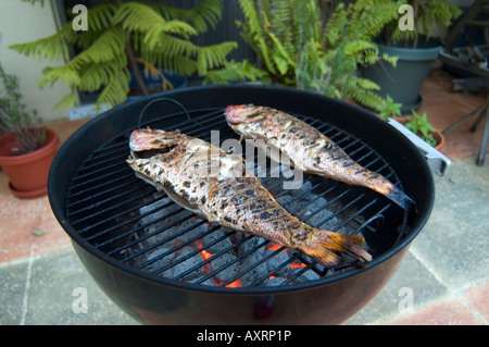 red snapper on the grill - Stock Photo