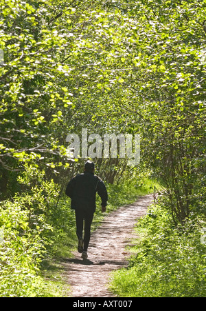 Runner in forest path at Spring - Stock Photo