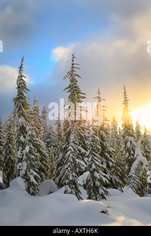 Skyline Lake in Washington's Cascade Mountains snowed in during winter - Stock Photo