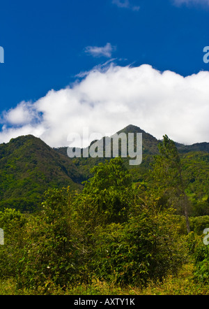 Peaks in Parque Nacional Volcan Baru National Park near Boquete Northern Panama - Stock Photo
