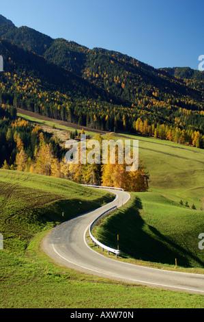 Santa Maddalena, Val di Funes, Dolomites, Bolzano province, Trentino-Alto Adige, Italy, Europe - Stock Photo