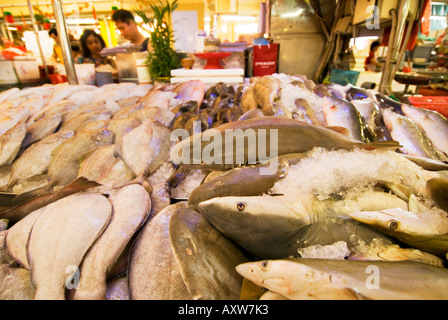 Tekka centre little india fishmarket fish market singapore for Fresh fish market miami