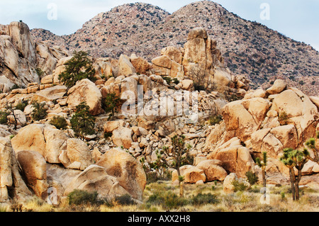 Giant Monzogranite Boulders in Joshua Tree National Park in the Mojave Desert, California USA - Stock Photo