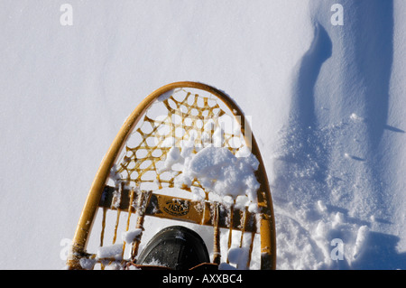 Canadian winter scene with fresh snow and snowshoe tracks and snowshoes in New Brunswick - Stock Photo