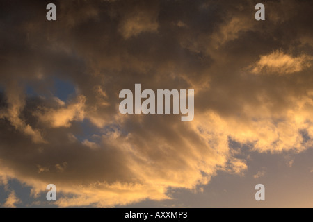 Sunset light on clearing storm clouds - Stock Photo