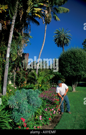 Groundskeeper hoe soil dirt in lawn garden plants at the Four ...