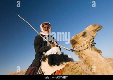 Bedouin on camel in the desert, Wadi Rum, Jordan, Middle East - Stock Photo