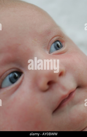 8 week old baby - Stock Photo