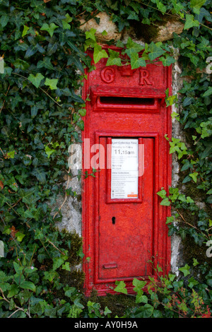 Red British George V postbox on wall surrounded with ivy - Stock Photo