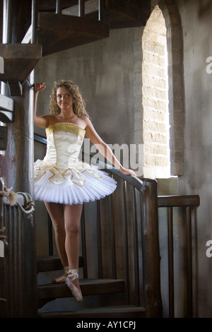 Young woman wearing a tutu on wooden stairs - Stock Photo