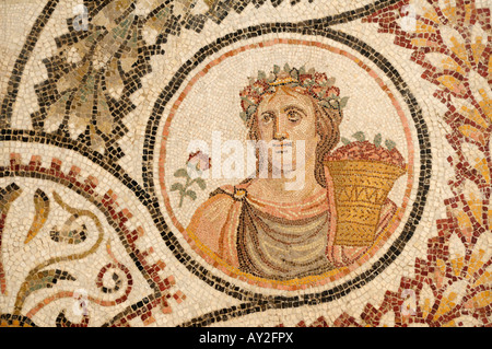 Mosaic, Bardo Museum Tunis Tunisia - Stock Photo