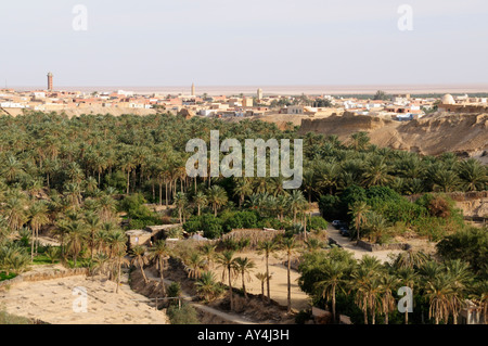The palm filed ravine known as 'La Corbeille',  Nefta, Tunisia - Stock Photo
