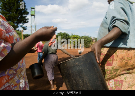 Africa Kenya Ruira Coffee pickers collect payment of 40 Kenyan Shillings for each bucket of coffee cherries at collection - Stock Photo