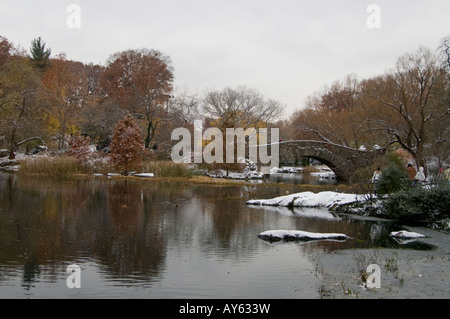The Bridge over the pond in central park New York - Stock Photo