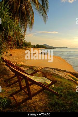 Deck Chairs on Golden Beach Koh Samui Thailand - Stock Photo