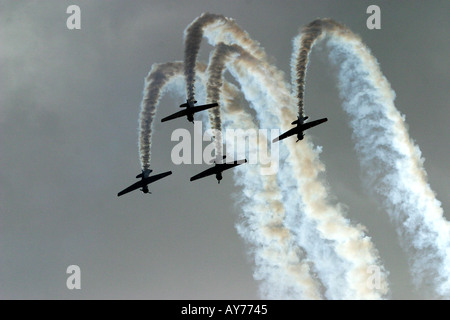 North American Harvards or T 6 Texans or SNJs - Stock Photo