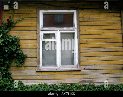 A faded yellow wood wall of a house,a window and a vine growing on the corner. - Stock Photo