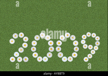 year 2009 written with daisies on clover meadow - Stock Photo