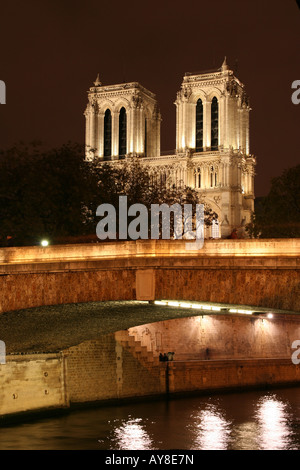 Paris by night - Notre-Dame cathedral and Petit Pont - Stock Photo