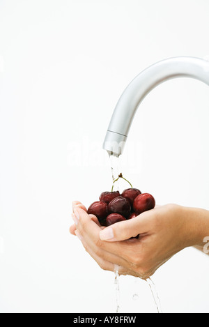 Woman rinsing handful of cherries under faucet, cropped view of hands - Stock Photo