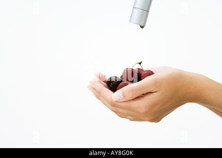Woman holding handful of cherries under faucet, cropped view of hands - Stock Photo