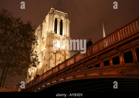 Paris by night - Notre-Dame cathedral and Pont au Double - Stock Photo