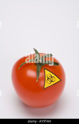 Biohazard warning sign on tomato Symbol genetic manipulated food - Stock Photo