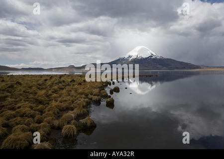 Reflection and heavenly light on Mount Parinacota in Lauca National Park (Chile) and Sajama National Park (Boliva) - Stock Photo