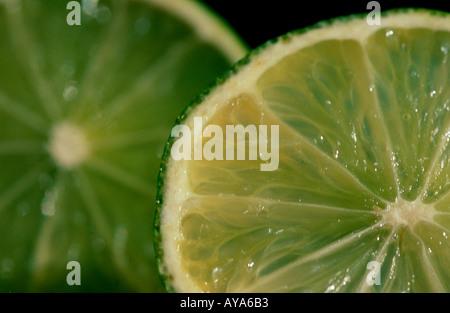 Lime fruits Citrus aurantiifolia Limettenscheiben Rautengewaechse Rutaceae Zitrusfruechte citrus fruits Frucht Nahrungsmittel - Stock Photo