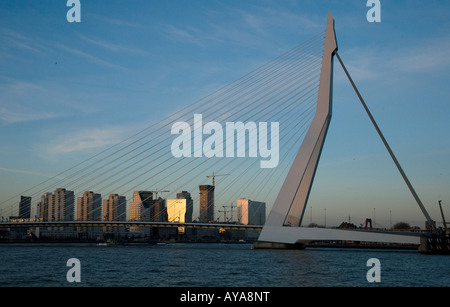View of Rotterdam centre taken from the Wilhelminapier. - Stock Photo