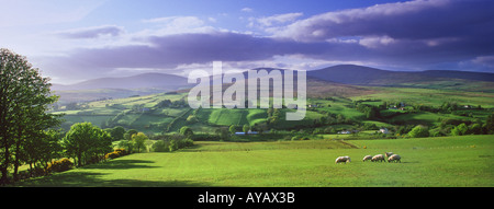 Summer evening in the Glenelly Valley, County Tyrone, Northern Ireland. - Stock Photo