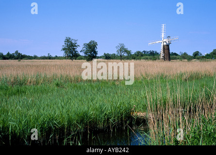 Windmill at Turf Fen Mill Ludham Norfolk England - Stock Photo