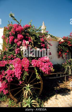 Cotage in Algarve Portugal near Silves - Stock Photo